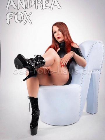 TS Andrea Fox (Private Wohnung) Galeriebild